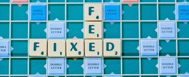 Photograph of Scrabble Letters Fixed fee
